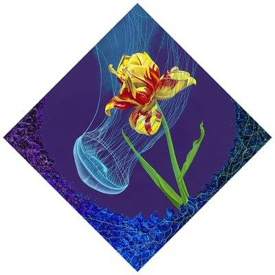 Tulip & Jellyfish Embrace